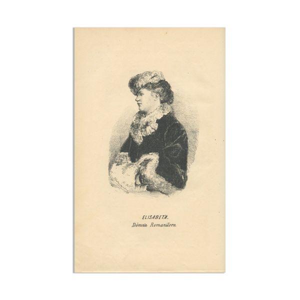 A. P. Alessi și Massimu Pop, Războiul Oriental Ilustrat, 1878